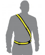Oxford - Bright Belt
